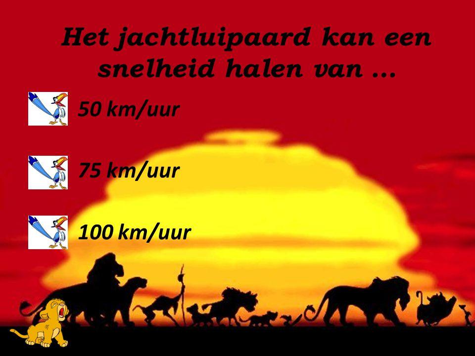 50 km/uur 75 km/uur 100 km/uur Het jachtluipaard kan een snelheid halen van …