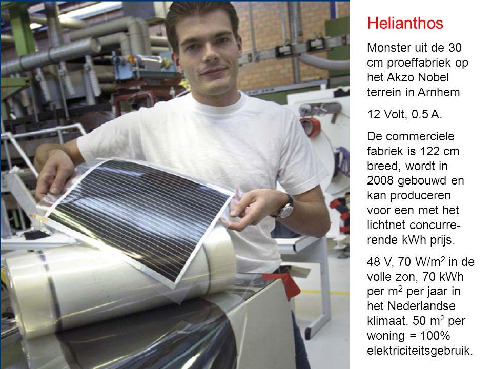 Helianthos Monster uit de 30 cm proeffabriek op het Akzo Nobel terrein in Arnhem 12 Volt, 0.5 A.