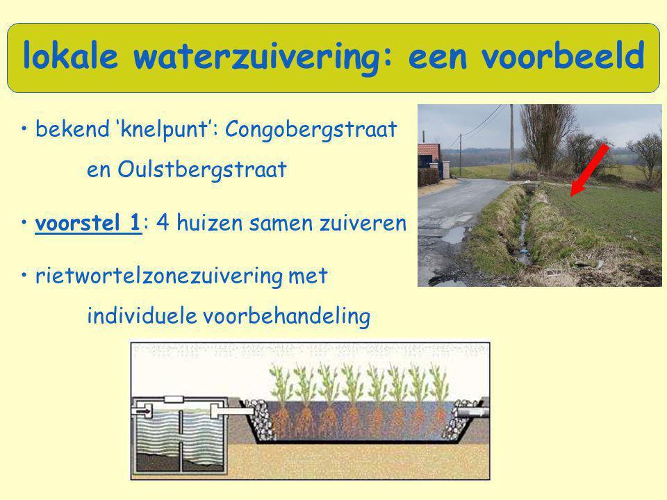 lokale waterzuivering: een voorbeeld • bekend 'knelpunt': Congobergstraat en Oulstbergstraat • voorstel 1: 4 huizen samen zuiveren • rietwortelzonezui