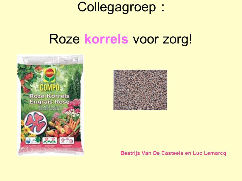 Collegagroep : Roze korrels voor zorg! Beatrijs Van De Casteele en Luc Lemarcq
