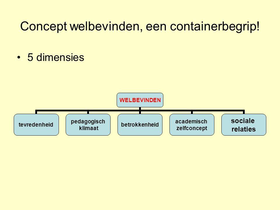 Concept welbevinden, een containerbegrip.
