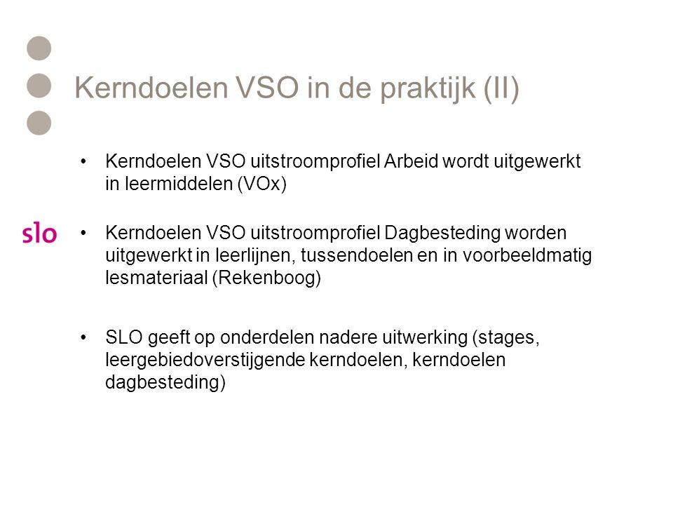 Kerndoelen VSO in de praktijk (II) •Kerndoelen VSO uitstroomprofiel Arbeid wordt uitgewerkt in leermiddelen (VOx) •Kerndoelen VSO uitstroomprofiel Dag