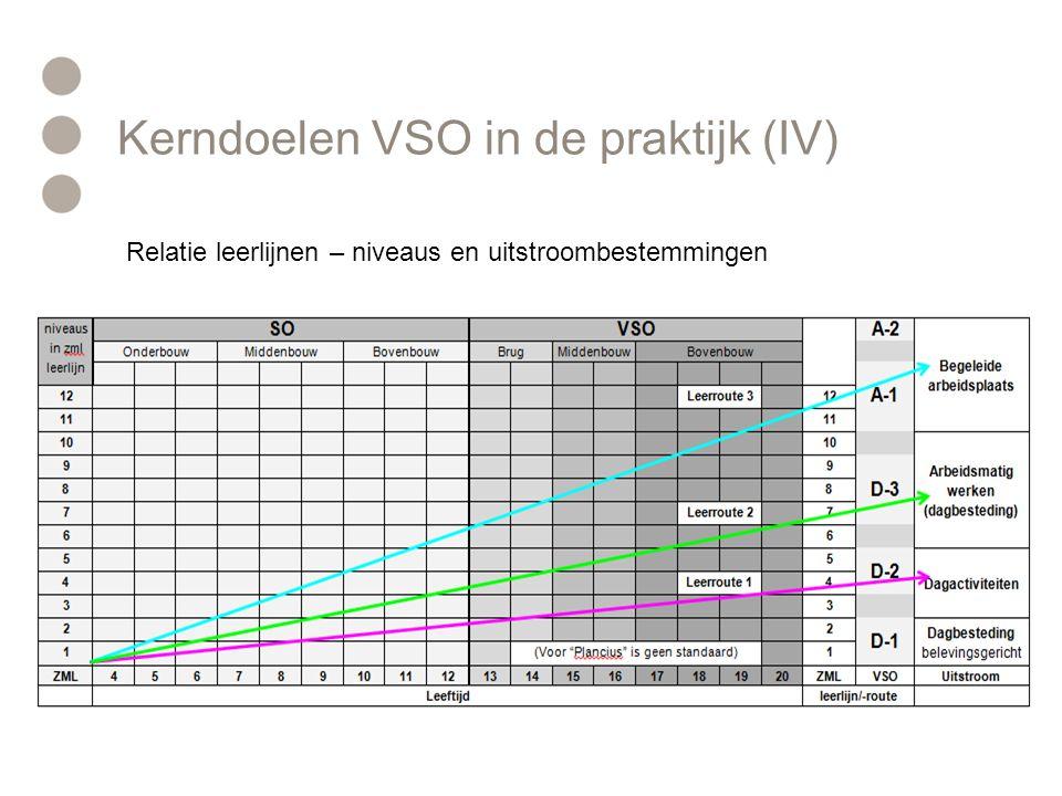 Relatie leerlijnen – niveaus en uitstroombestemmingen Kerndoelen VSO in de praktijk (IV)