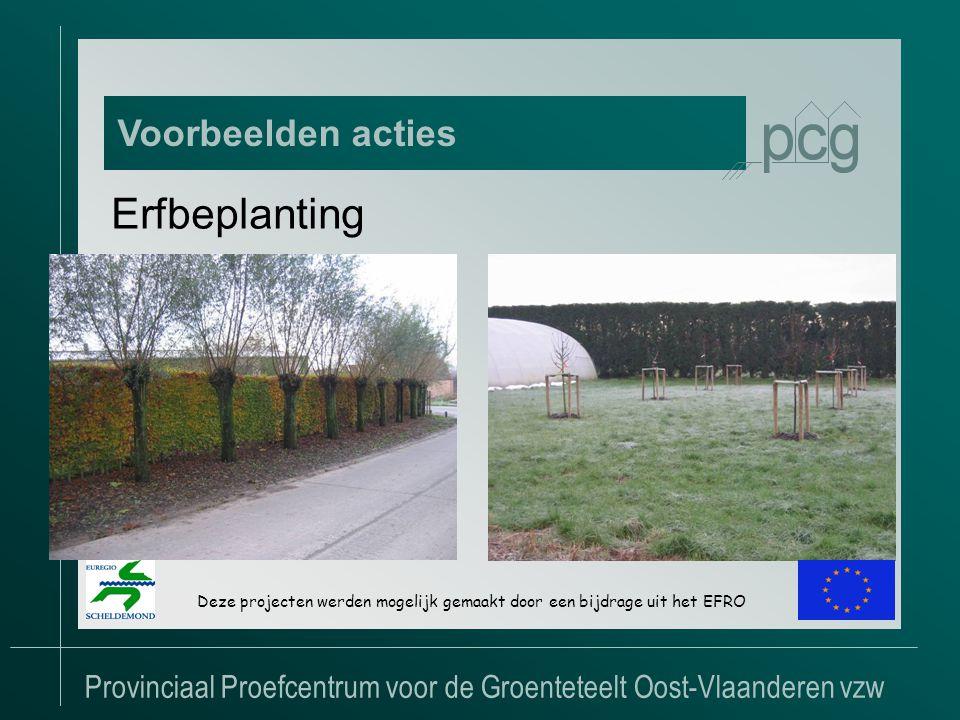 Provinciaal Proefcentrum voor de Groenteteelt Oost-Vlaanderen vzw Voorbeelden acties Deze projecten werden mogelijk gemaakt door een bijdrage uit het EFRO Erfbeplanting
