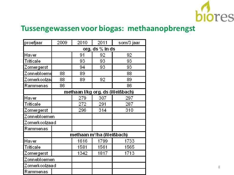 8 Tussengewassen voor biogas: methaanopbrengst