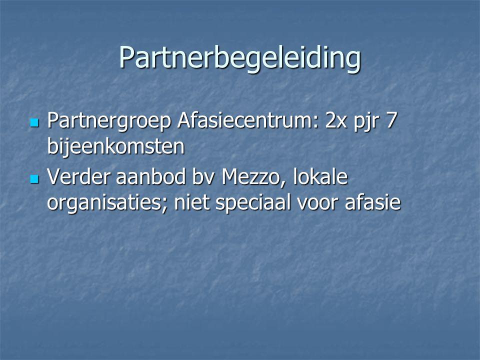 Partnerbegeleiding  Partnergroep Afasiecentrum: 2x pjr 7 bijeenkomsten  Verder aanbod bv Mezzo, lokale organisaties; niet speciaal voor afasie