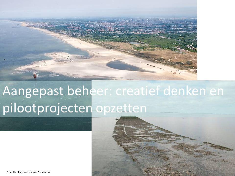 Aangepast beheer: creatief denken en pilootprojecten opzetten Credits: Zandmotor en Ecoshape