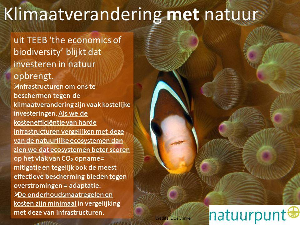 Klimaatverandering met natuur Adaptatie en kustveiligheid: biodiversiteit is geld waard Klimaatverandering met natuur uit TEEB 'the economics of biodi