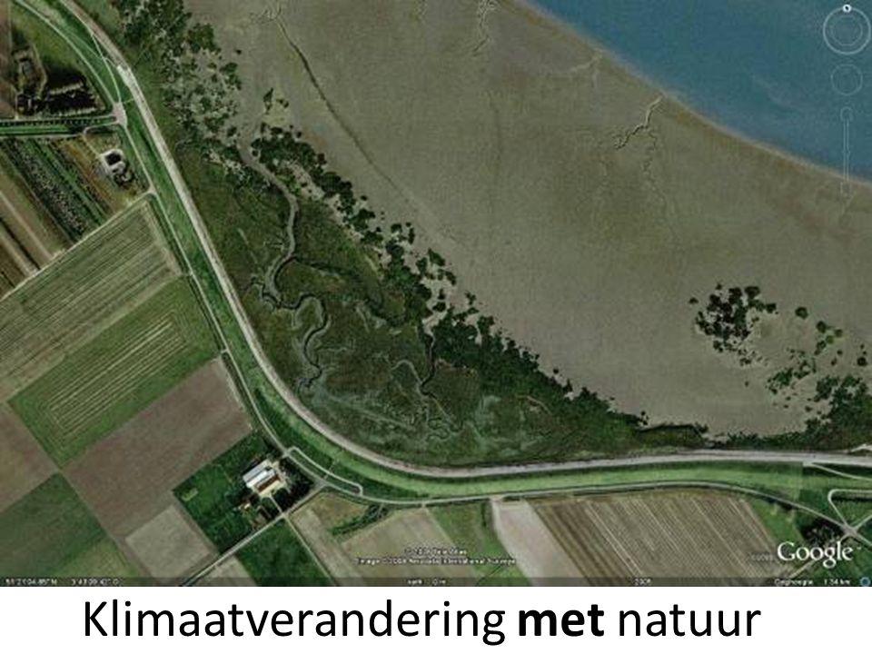 Sterk bebouwde kust En in België? Credits VLIZ (Decleer, Misjel), 2006