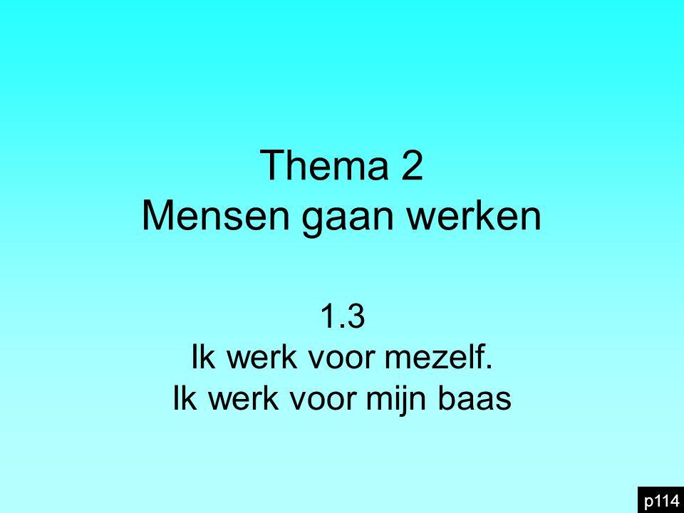 Thema 2 Mensen gaan werken 1.3 Ik werk voor mezelf. Ik werk voor mijn baas p114