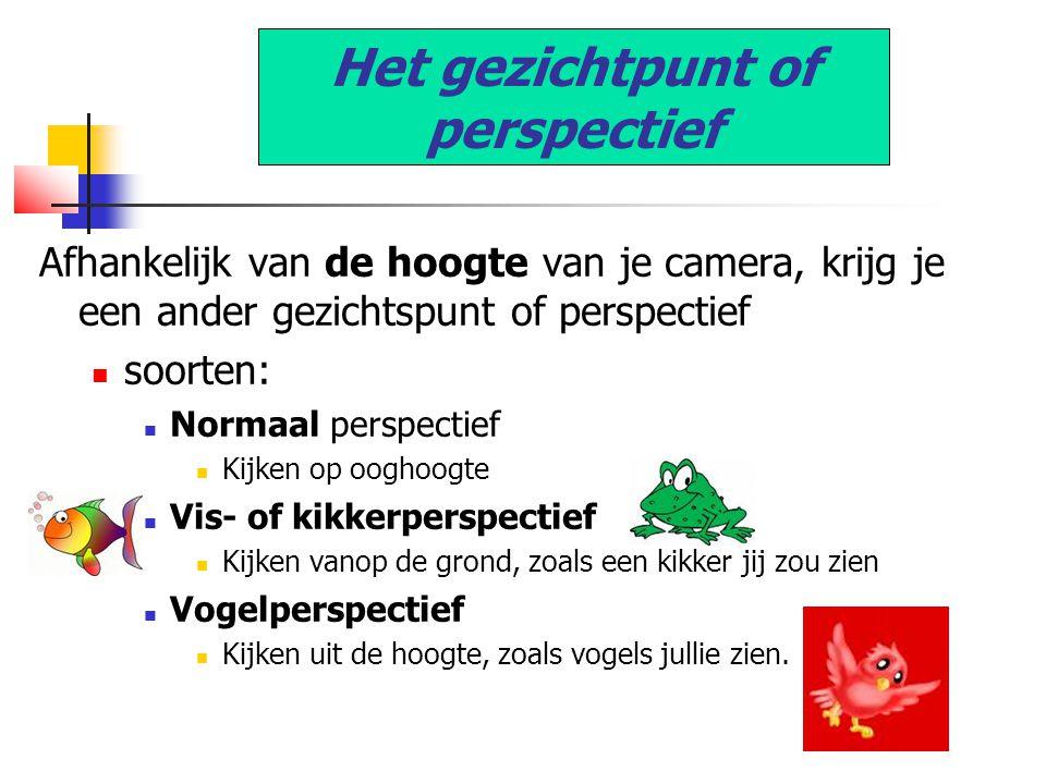 Het gezichtpunt of perspectief Afhankelijk van de hoogte van je camera, krijg je een ander gezichtspunt of perspectief  soorten:  Normaal perspectief  Kijken op ooghoogte  Vis- of kikkerperspectief  Kijken vanop de grond, zoals een kikker jij zou zien  Vogelperspectief  Kijken uit de hoogte, zoals vogels jullie zien.