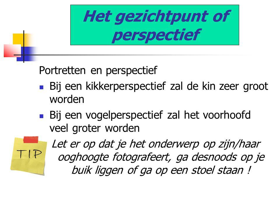 Het gezichtpunt of perspectief Portretten en perspectief  Bij een kikkerperspectief zal de kin zeer groot worden  Bij een vogelperspectief zal het v
