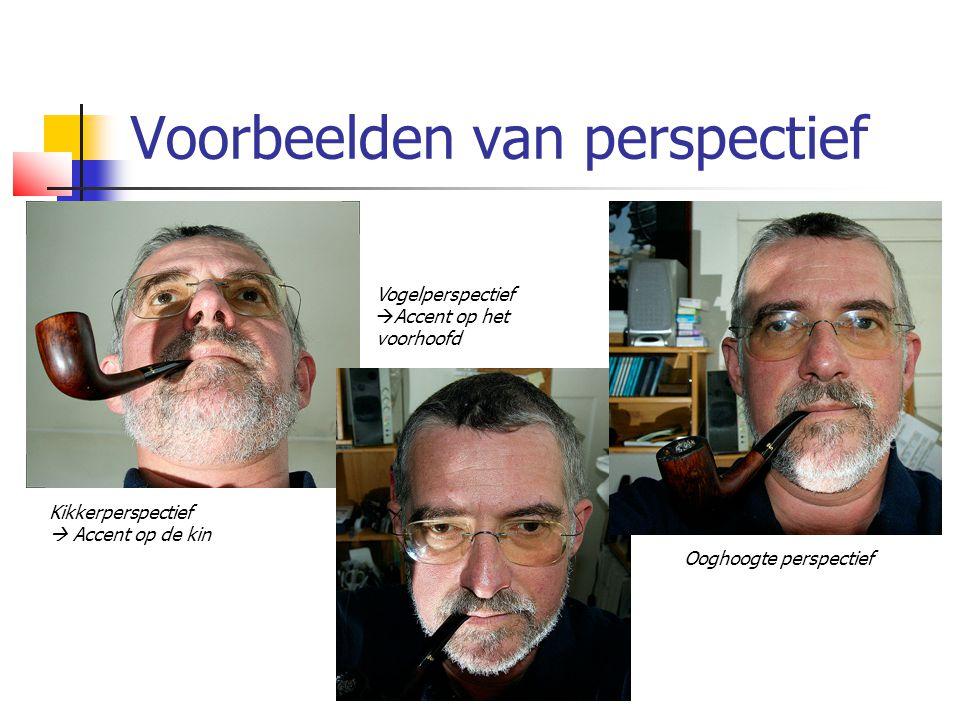 Voorbeelden van perspectief Kikkerperspectief  Accent op de kin Vogelperspectief  Accent op het voorhoofd Ooghoogte perspectief