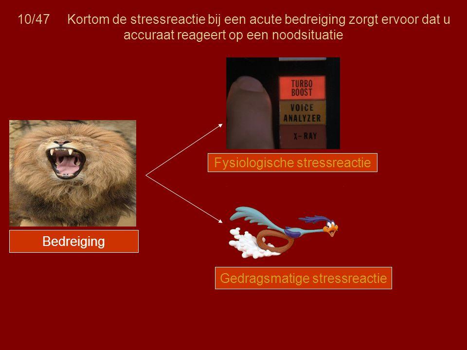 10/47 Kortom de stressreactie bij een acute bedreiging zorgt ervoor dat u accuraat reageert op een noodsituatie Bedreiging Fysiologische stressreactie Gedragsmatige stressreactie