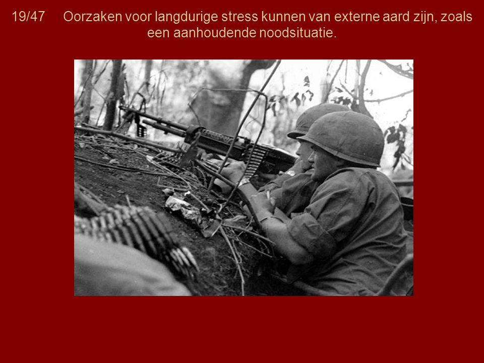 19/47 Oorzaken voor langdurige stress kunnen van externe aard zijn, zoals een aanhoudende noodsituatie.