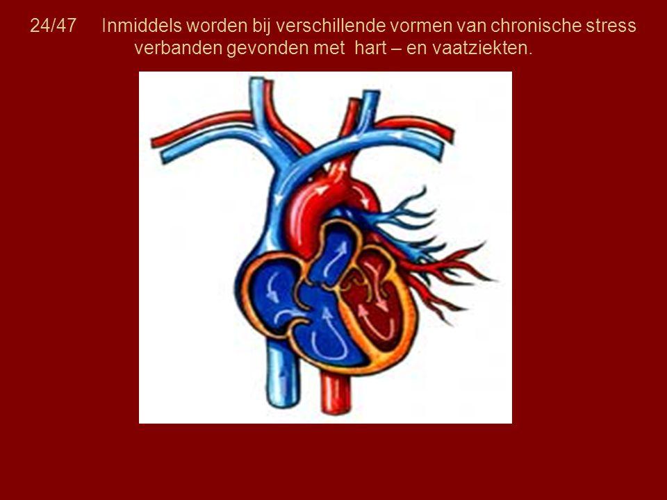 24/47 Inmiddels worden bij verschillende vormen van chronische stress verbanden gevonden met hart – en vaatziekten.