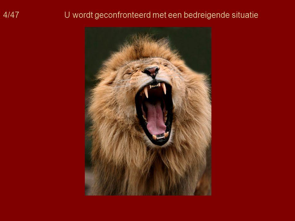 15/47 De stressreactie is in belangrijke mate afhankelijk van gedachten m.b.t.