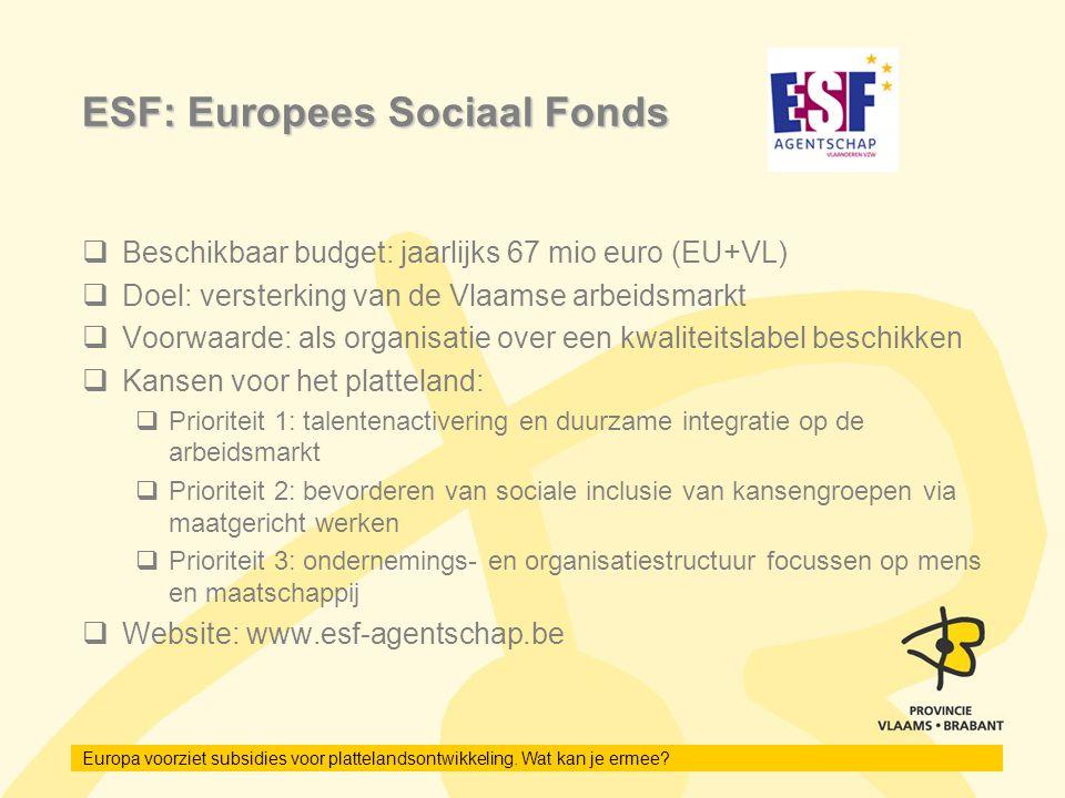 Europa voorziet subsidies voor plattelandsontwikkeling. Wat kan je ermee? ESF: Europees Sociaal Fonds  Beschikbaar budget: jaarlijks 67 mio euro (EU+