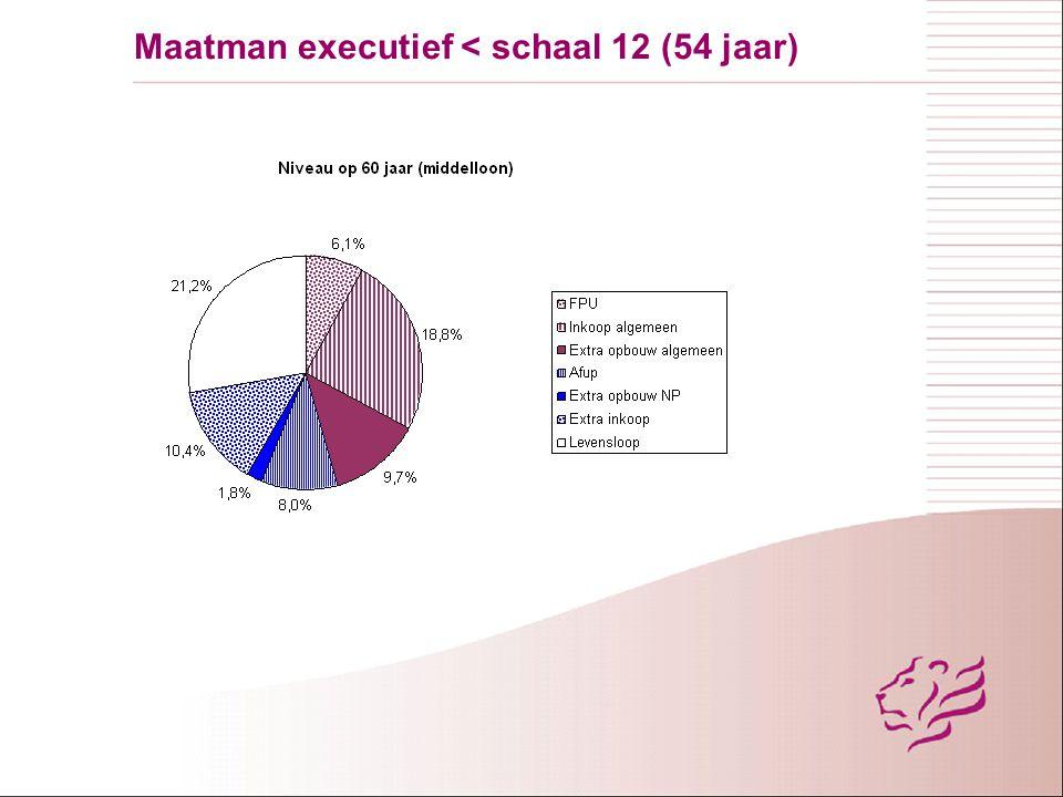 Maatman executief < schaal 12 (54 jaar)