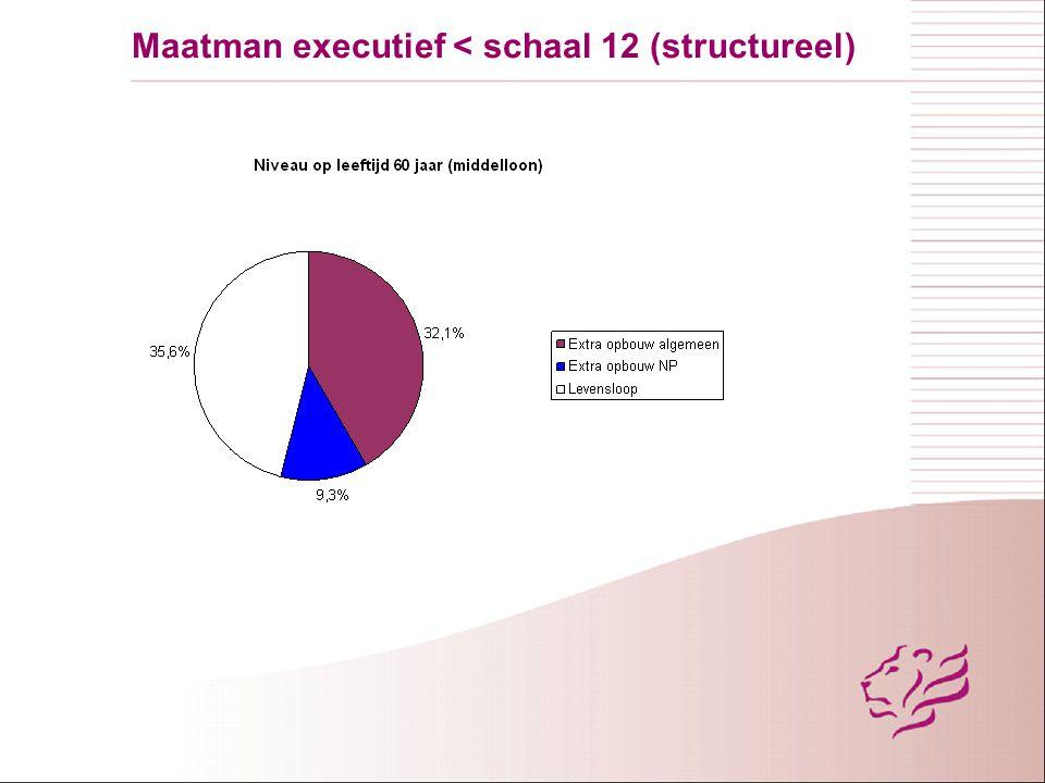 Maatman executief < schaal 12 (40 jaar)