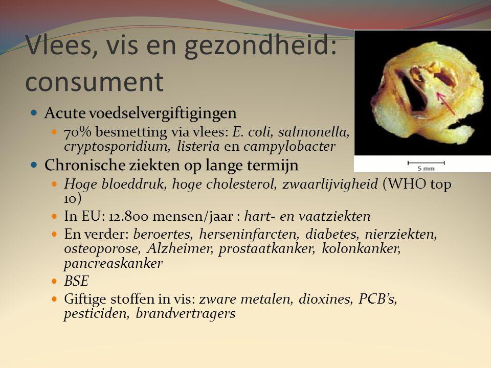 Vlees, vis en gezondheid: consument  Acute voedselvergiftigingen  70% besmetting via vlees: E.
