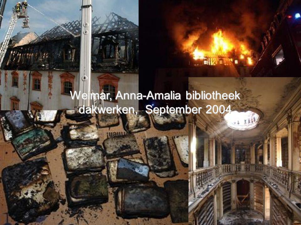 Weimar, Anna-Amalia bibliotheek dakwerken, September 2004