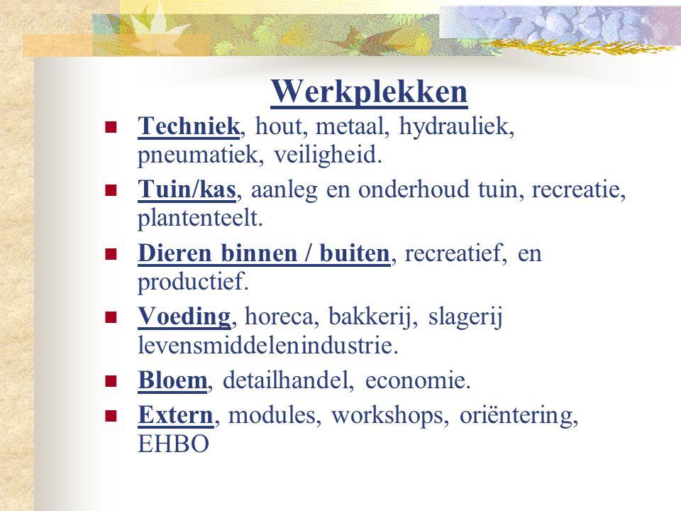 Werkplekken  Techniek, hout, metaal, hydrauliek, pneumatiek, veiligheid.  Tuin/kas, aanleg en onderhoud tuin, recreatie, plantenteelt.  Dieren binn