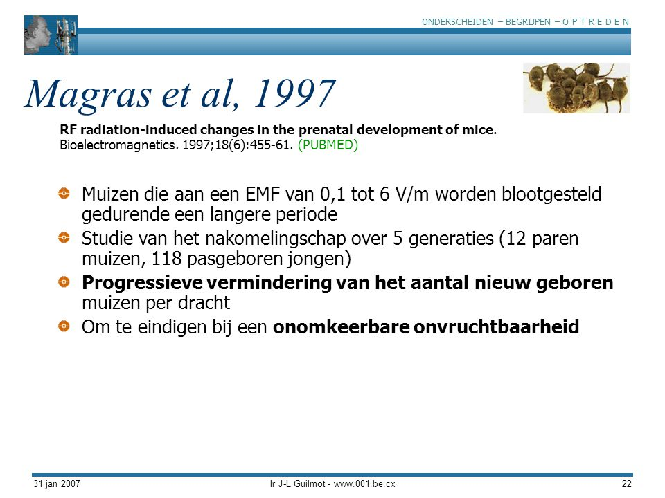 ONDERSCHEIDEN – BEGRIJPEN – O P T R E D E N 31 jan 2007Ir J-L Guilmot - www.001.be.cx22 Magras et al, 1997 Muizen die aan een EMF van 0,1 tot 6 V/m wo