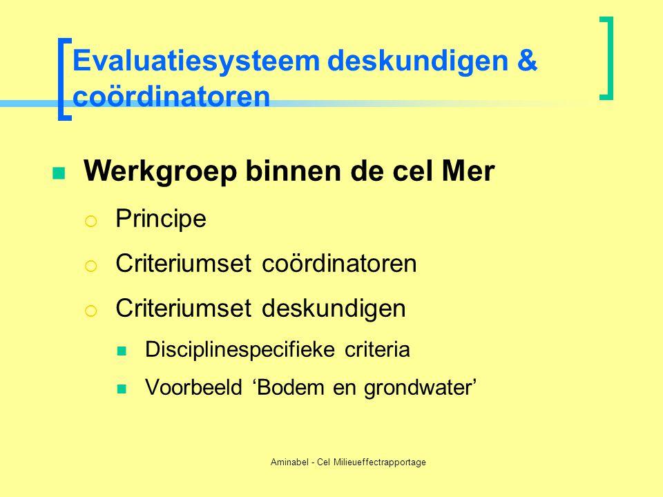 Aminabel - Cel Milieueffectrapportage Evaluatiesysteem deskundigen & coördinatoren  Werkgroep binnen de cel Mer  Principe  Criteriumset coördinator