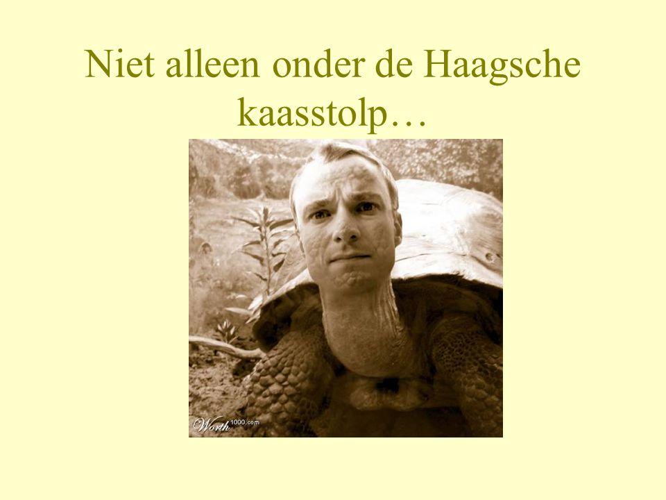 Niet alleen onder de Haagsche kaasstolp…