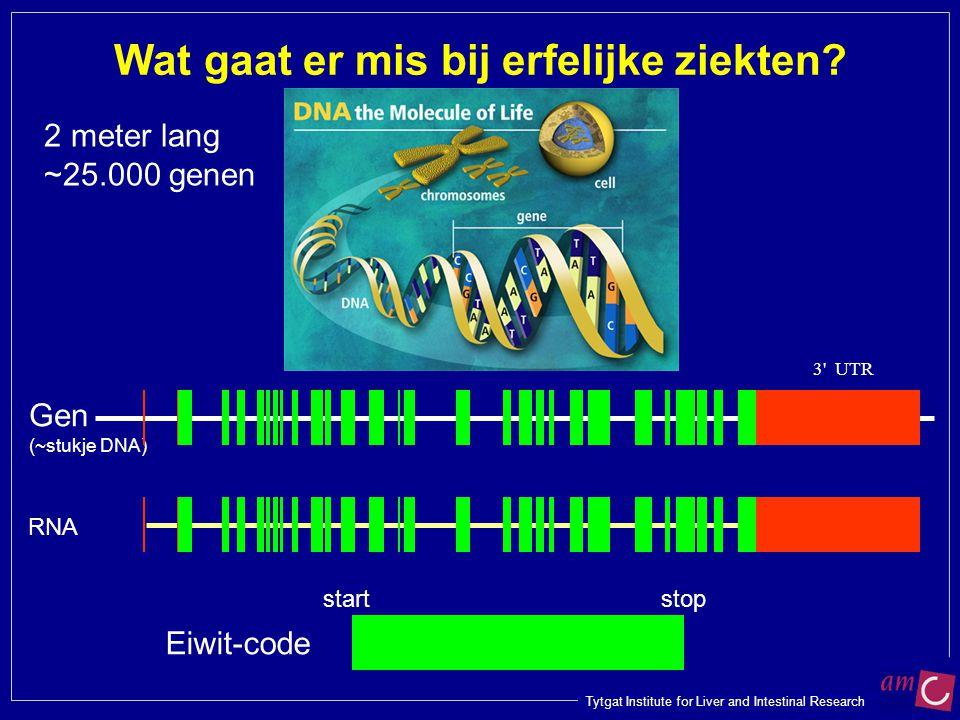Tytgat Institute for Liver and Intestinal Research Gen (~stukje DNA) Wat gaat er mis bij erfelijke ziekten? 3' UTR RNA 2 meter lang ~25.000 genen Eiwi
