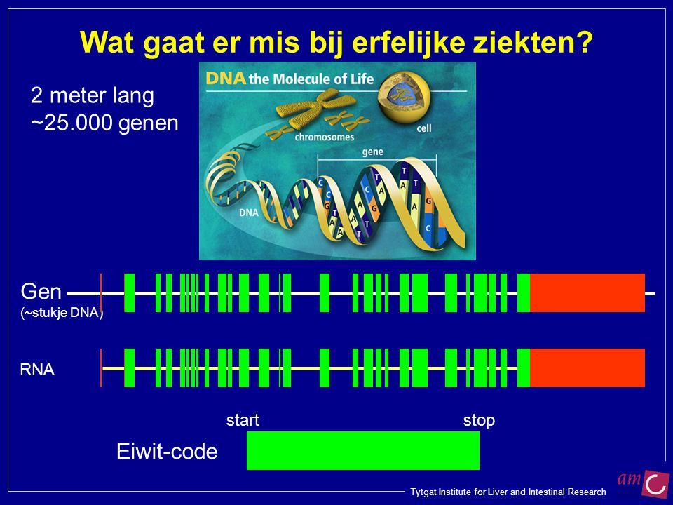 Tytgat Institute for Liver and Intestinal Research Gen (~stukje DNA) Wat gaat er mis bij erfelijke ziekten? RNA 2 meter lang ~25.000 genen Eiwit-code