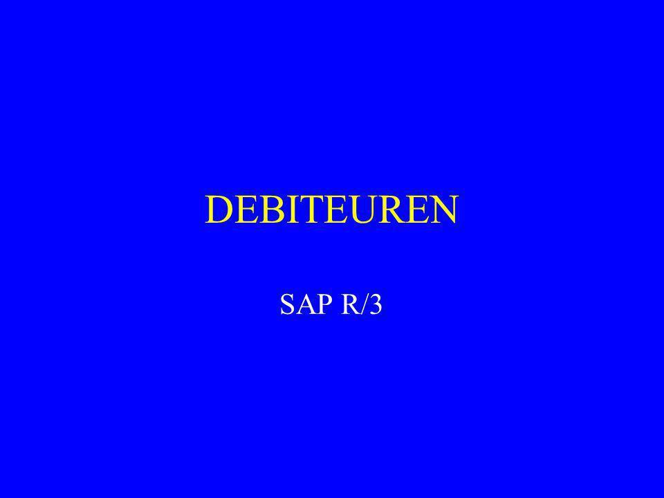 DEBITEUREN SAP R/3