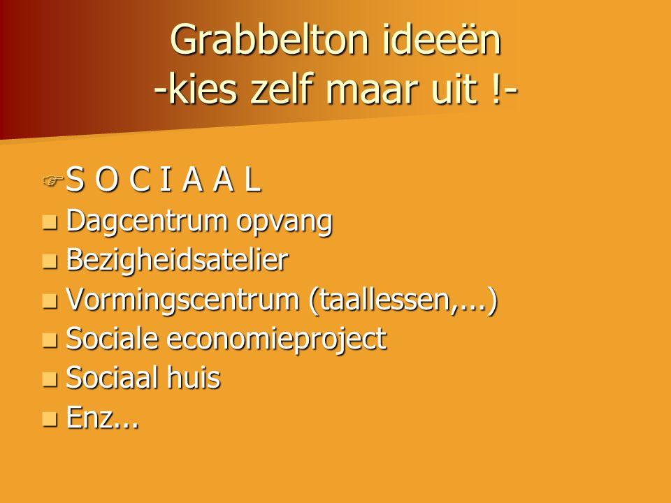 Grabbelton ideeën -kies zelf maar uit !-  S O C I A A L  Dagcentrum opvang  Bezigheidsatelier  Vormingscentrum (taallessen,...)  Sociale economie
