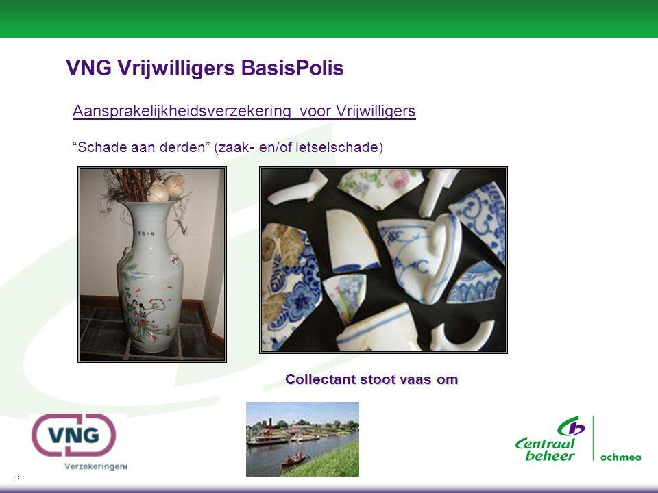 12 VNG Vrijwilligers BasisPolis Aansprakelijkheidsverzekering voor Vrijwilligers Schade aan derden (zaak- en/of letselschade) Collectant stoot vaas om