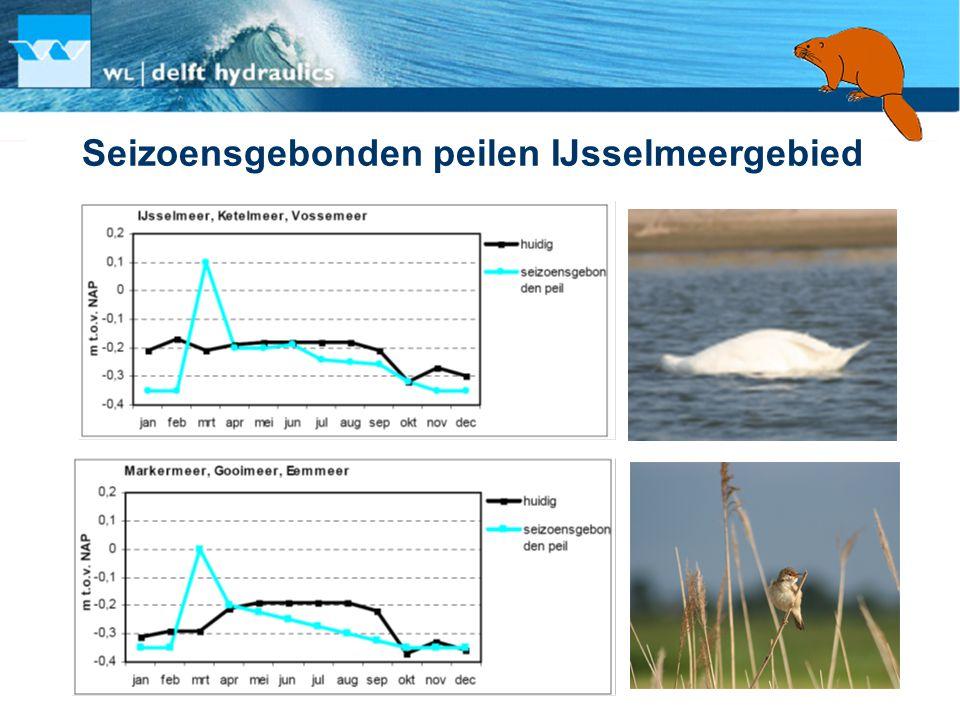 Seizoensgebonden peilen IJsselmeergebied