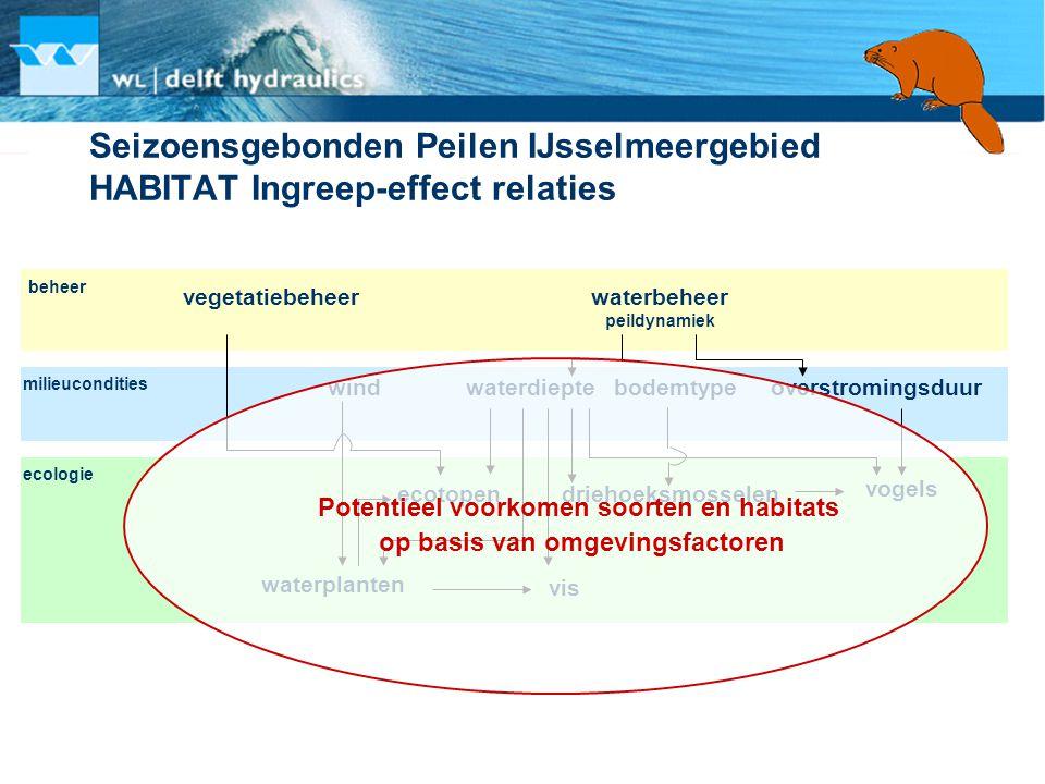 Seizoensgebonden Peilen IJsselmeergebied HABITAT Ingreep-effect relaties waterbeheer peildynamiek overstromingsduurwaterdiepte vogels vis waterplanten