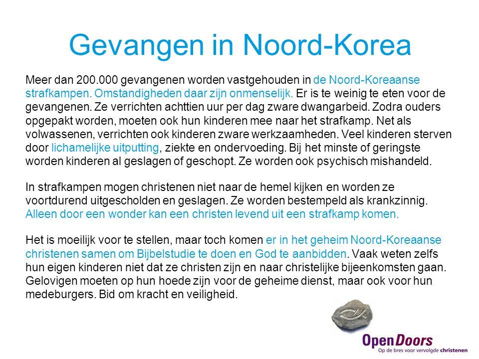 Meer dan 200.000 gevangenen worden vastgehouden in de Noord-Koreaanse strafkampen.