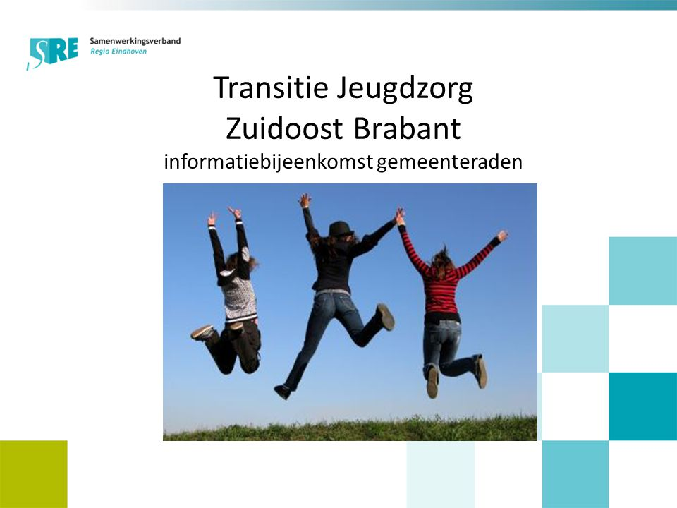 Transitie Jeugdzorg Zuidoost Brabant informatiebijeenkomst gemeenteraden