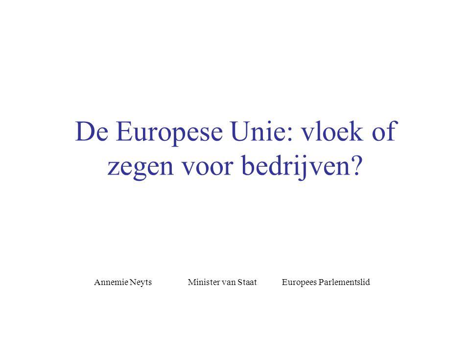 De Europese Unie: vloek of zegen voor bedrijven.