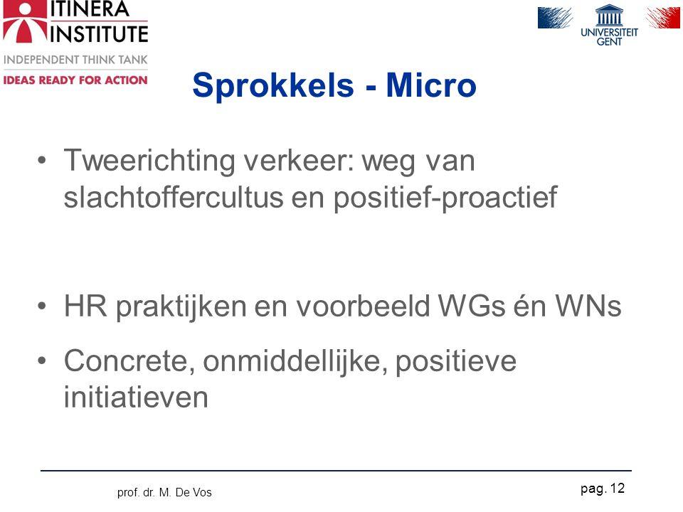 Sprokkels - Micro •Tweerichting verkeer: weg van slachtoffercultus en positief-proactief •HR praktijken en voorbeeld WGs én WNs •Concrete, onmiddellijke, positieve initiatieven prof.