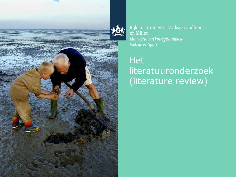 Het literatuuronderzoek (literature review)