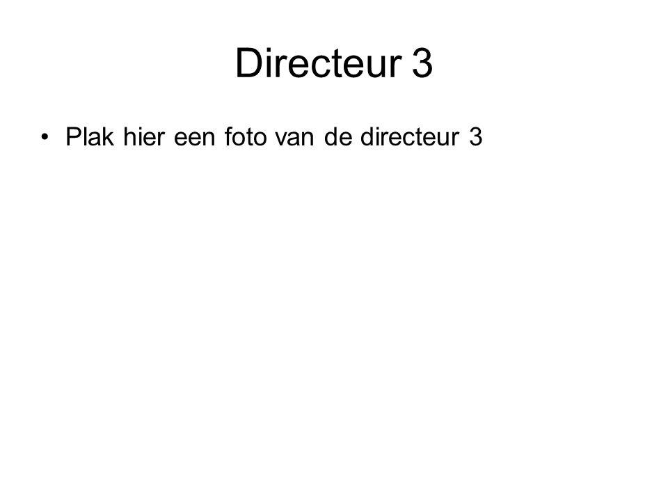 Beantwoord de onderstaande vragen voor directeur 3.