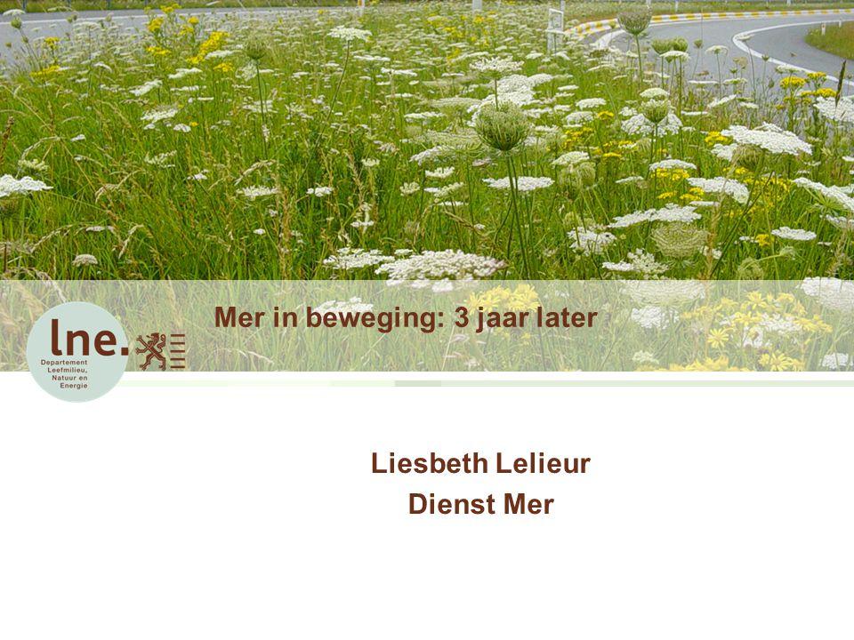 Mer in beweging: 3 jaar later Liesbeth Lelieur Dienst Mer
