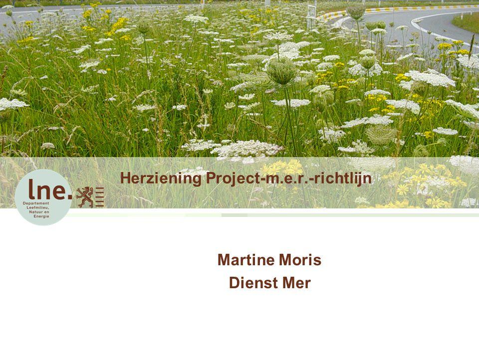 Herziening Project-m.e.r.-richtlijn Martine Moris Dienst Mer