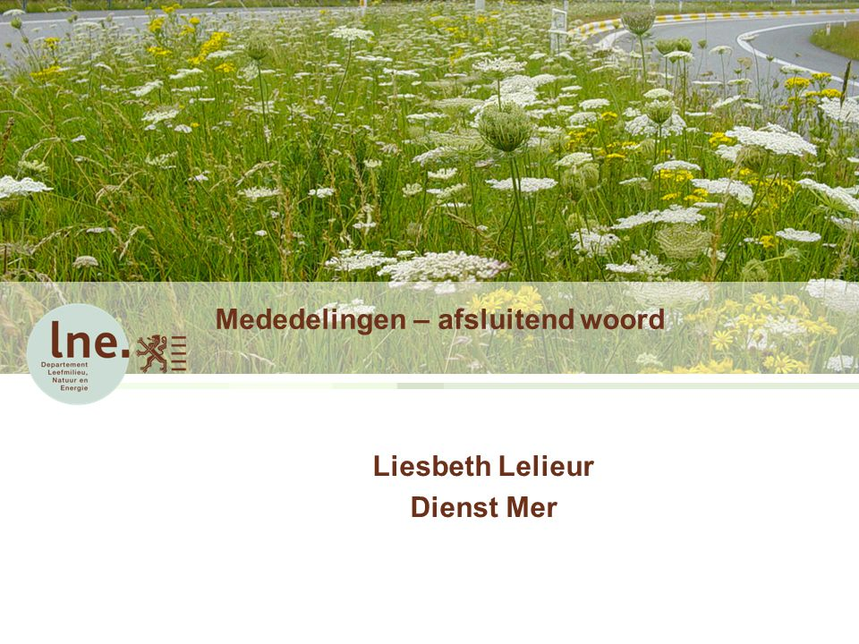 Mededelingen – afsluitend woord Liesbeth Lelieur Dienst Mer