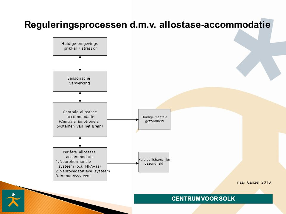 CENTRUM VOOR SOLK Reguleringsprocessen d.m.v.