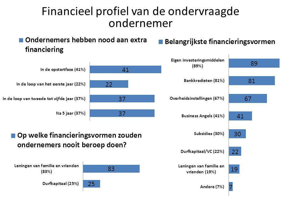 Financieel profiel van de ondervraagde ondernemer
