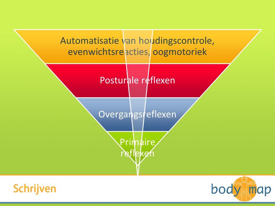 Automatisatie van houdingscontrole, evenwichtsreacties, oogmotoriek Posturale reflexen Overgangsreflexen Primaire reflexen