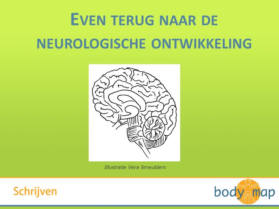 Illustratie Vera Smeulders E VEN TERUG NAAR DE NEUROLOGISCHE ONTWIKKELING